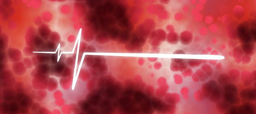 véradás, vér, vöröskereszt, élet