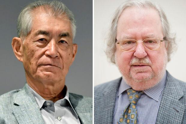 A rák ellen harcolnak az orvosi Nobel-díjasok