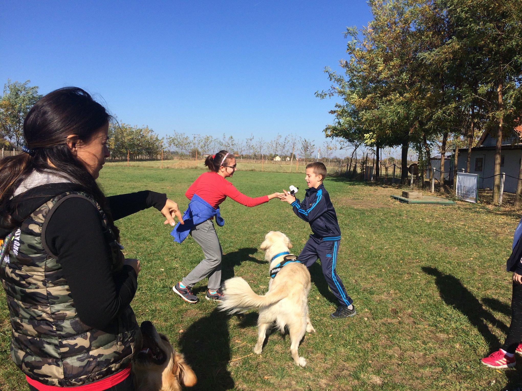 Sikeresen vizsgáztak a Dogland kutyái