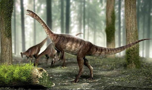 A dinoszauruszok egy eddig ismeretlen ősét találták meg