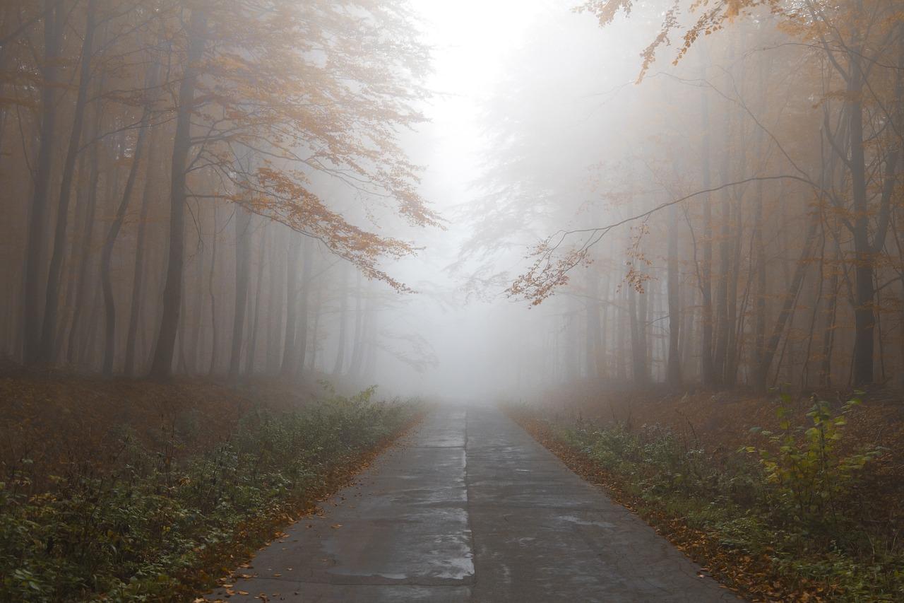 Nyirkos őszi idő érkezik