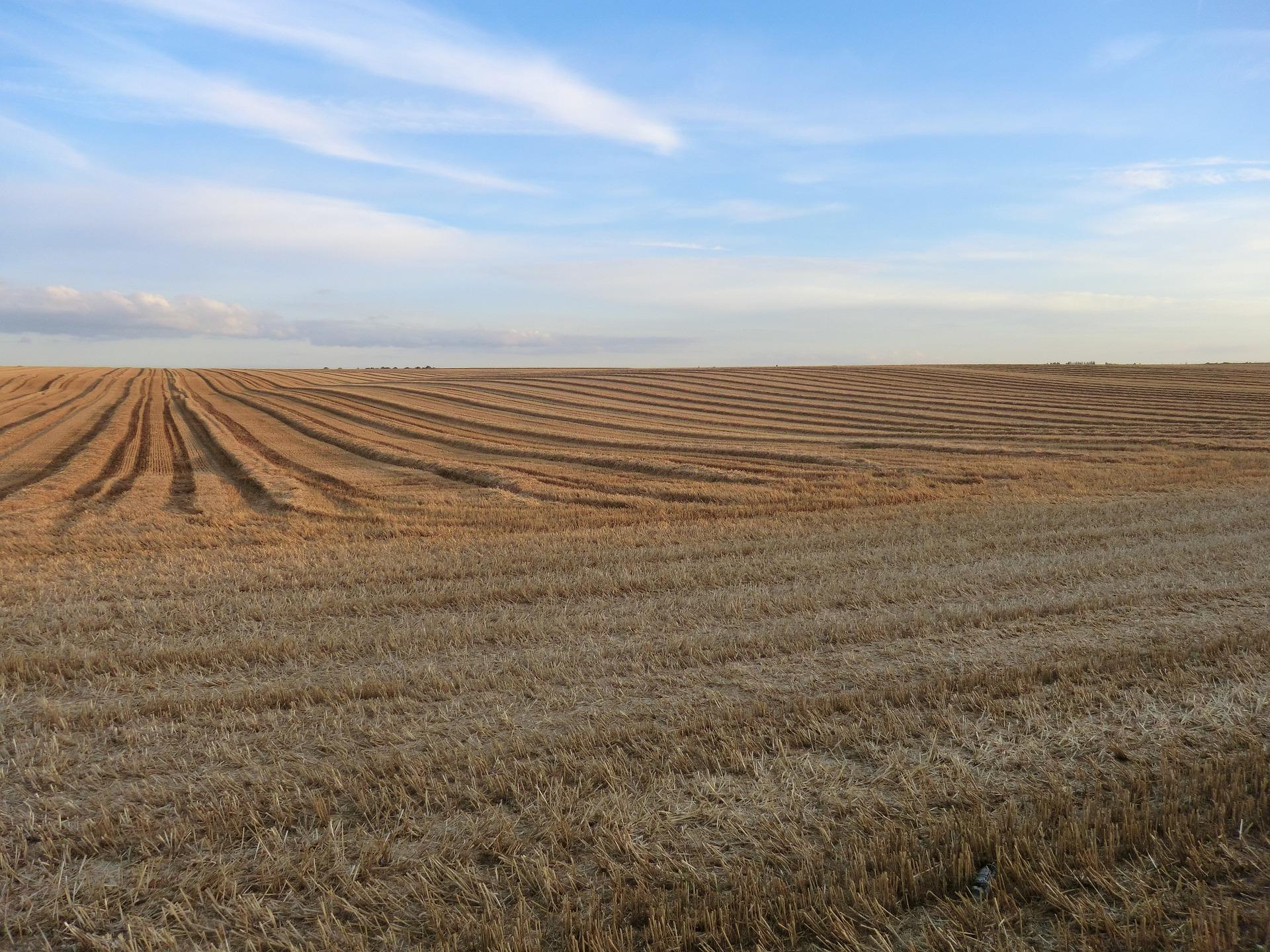 Sikeres volt idén is az agrártámogatás