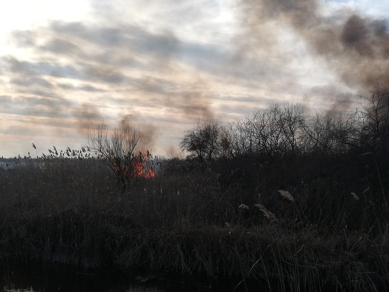 Nébih: tűzgyújtási tilalmat rendeltek el öt megyében