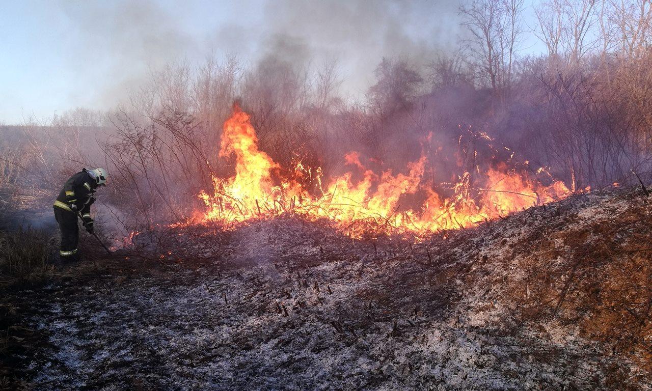 Mintegy 40 hektárnyi területen ég a száraz fű Biharugra külterületén