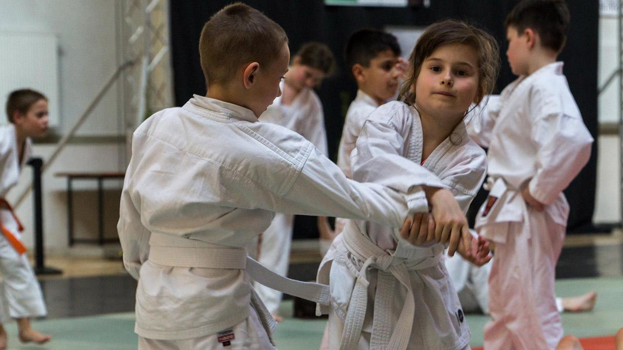 Megtartották a IV. Nemzetközi Aikido konferenciát Makón
