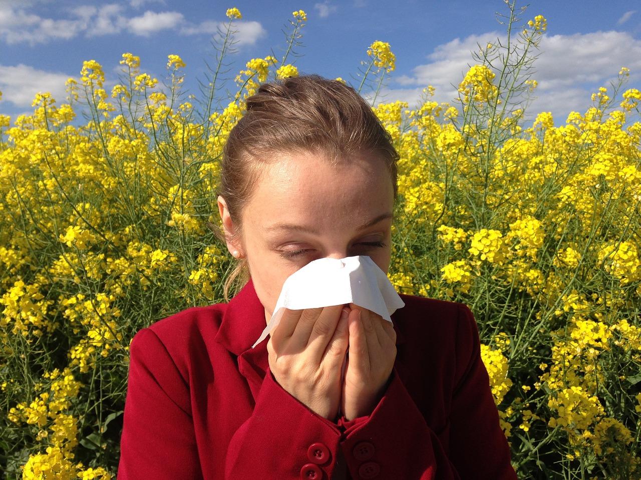 pollenkoncentráció allergia