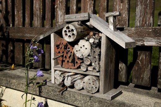 Méhecskehotel a beporzó rovarok védelméért