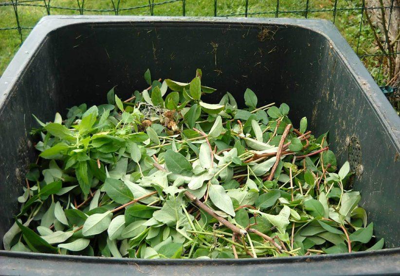 zöld hulladék