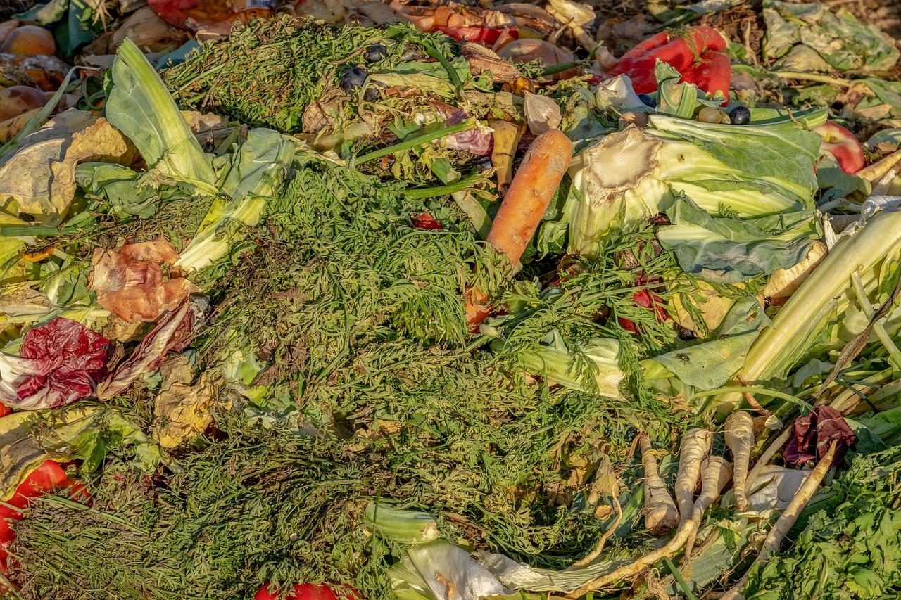 Május végétől átvehetőek a komposztáló edények Békésen is