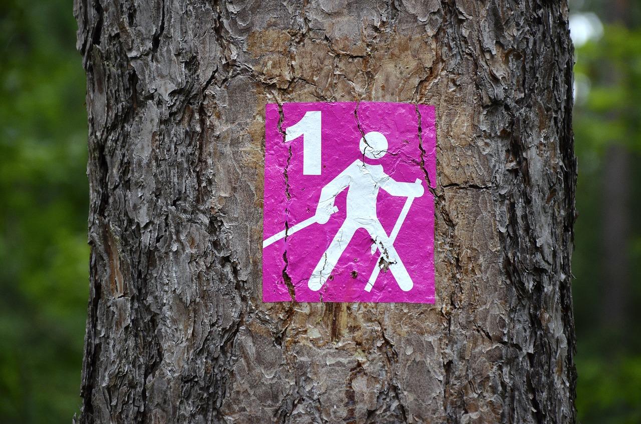 Botra fel!: nordic walkinggal a stabil vércukorszintért