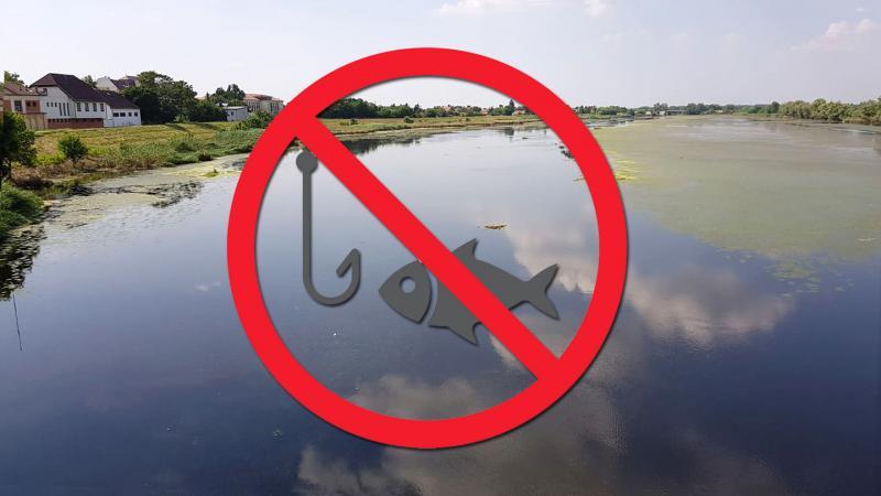 Horgászati tilalom lépett életbe több folyószakaszon