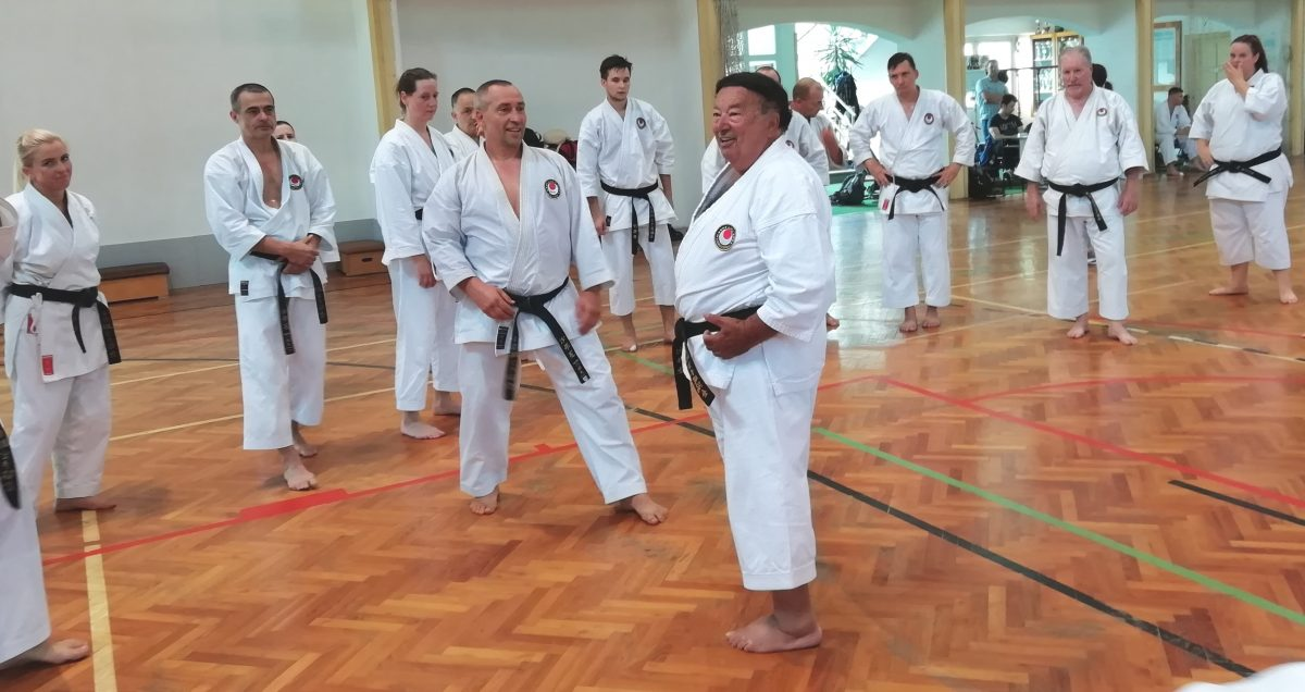 Nemzetközi karate edzőtábor zajlott Gyulán