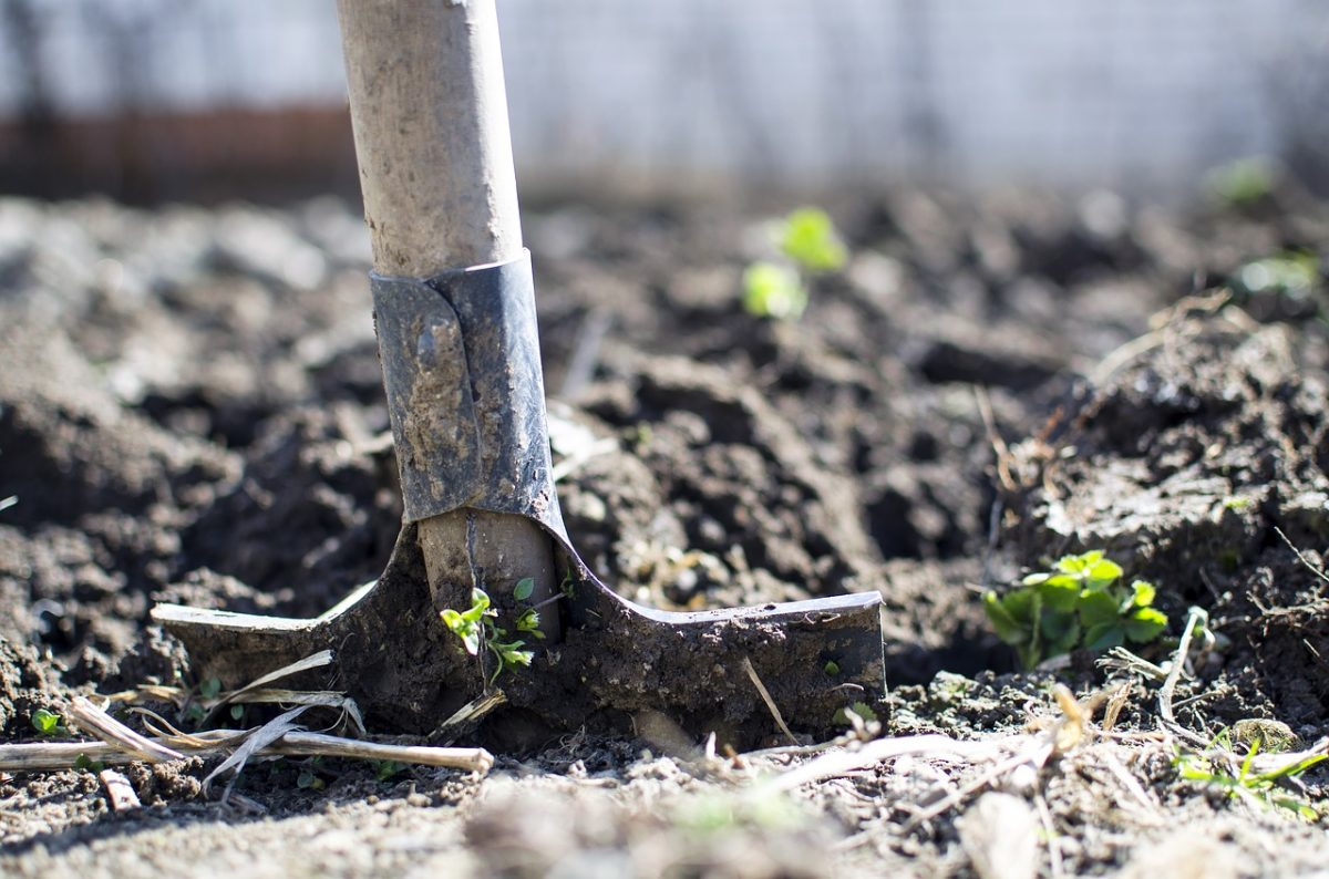 Kritikus aszály sújtja a mezőgazdaságot, csapadék nem várható