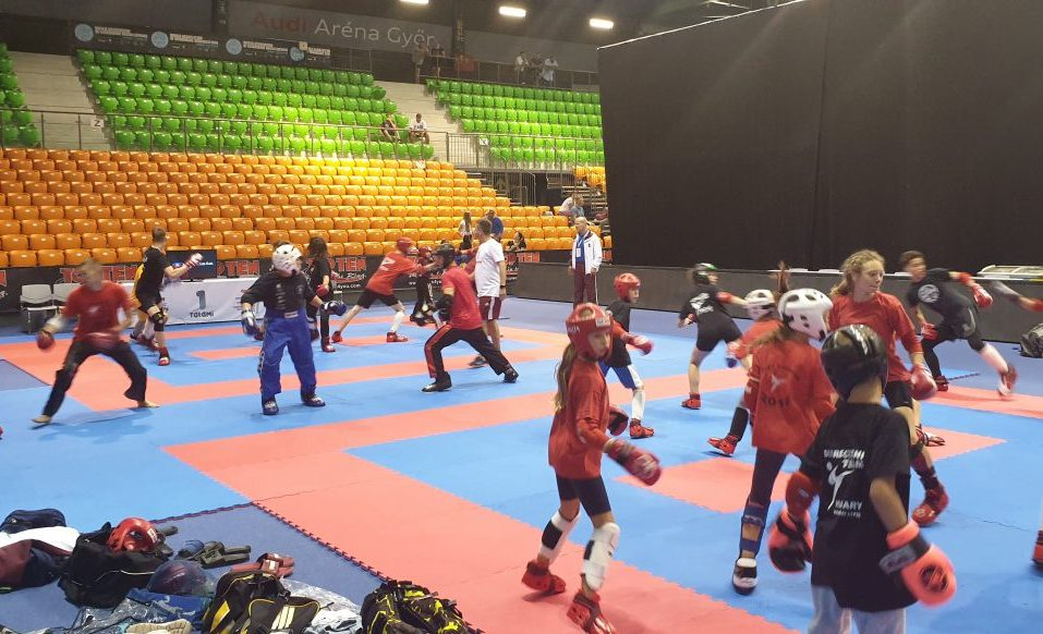 Ma kezdődnek a küzdelmek a Kick-box Európa-bajnokságon