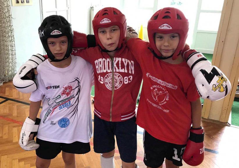 Kick-box edzőtábor Gyula
