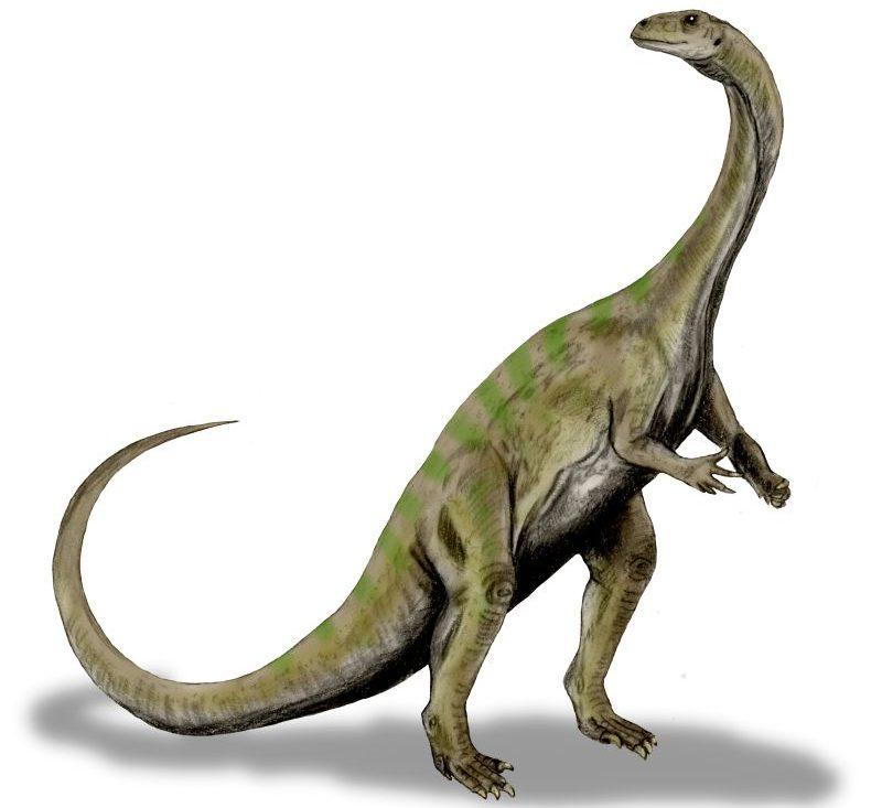 dinoszauruszfajt