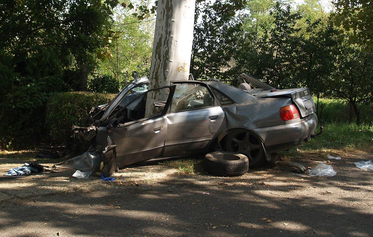 Akkora volt az ütközés, hogy a fa kettészelte az Audit