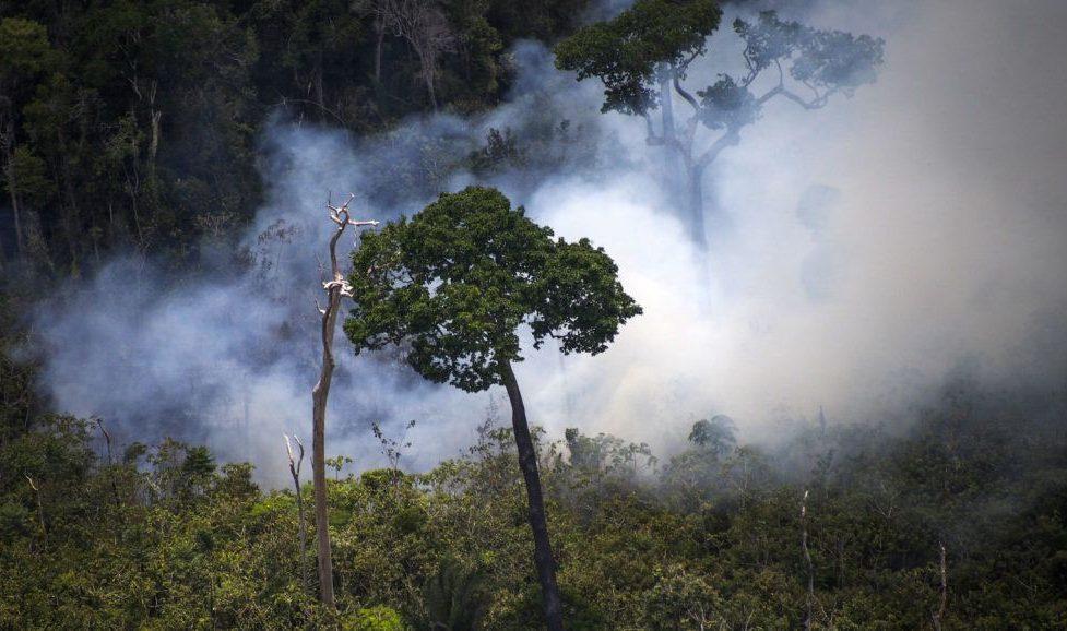 Újabb több száz helyen ég a brazil őserdő