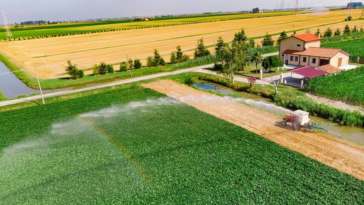 A drónok mezőgazdasági felhasználásának lehetőségei igen szélesek