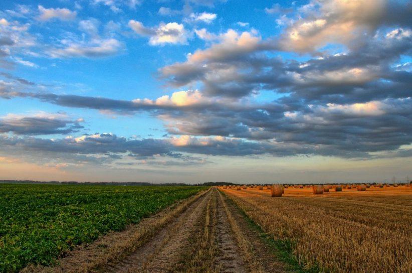 vidékfejlesztés, fenntartható, agroökológia, szántóföldi