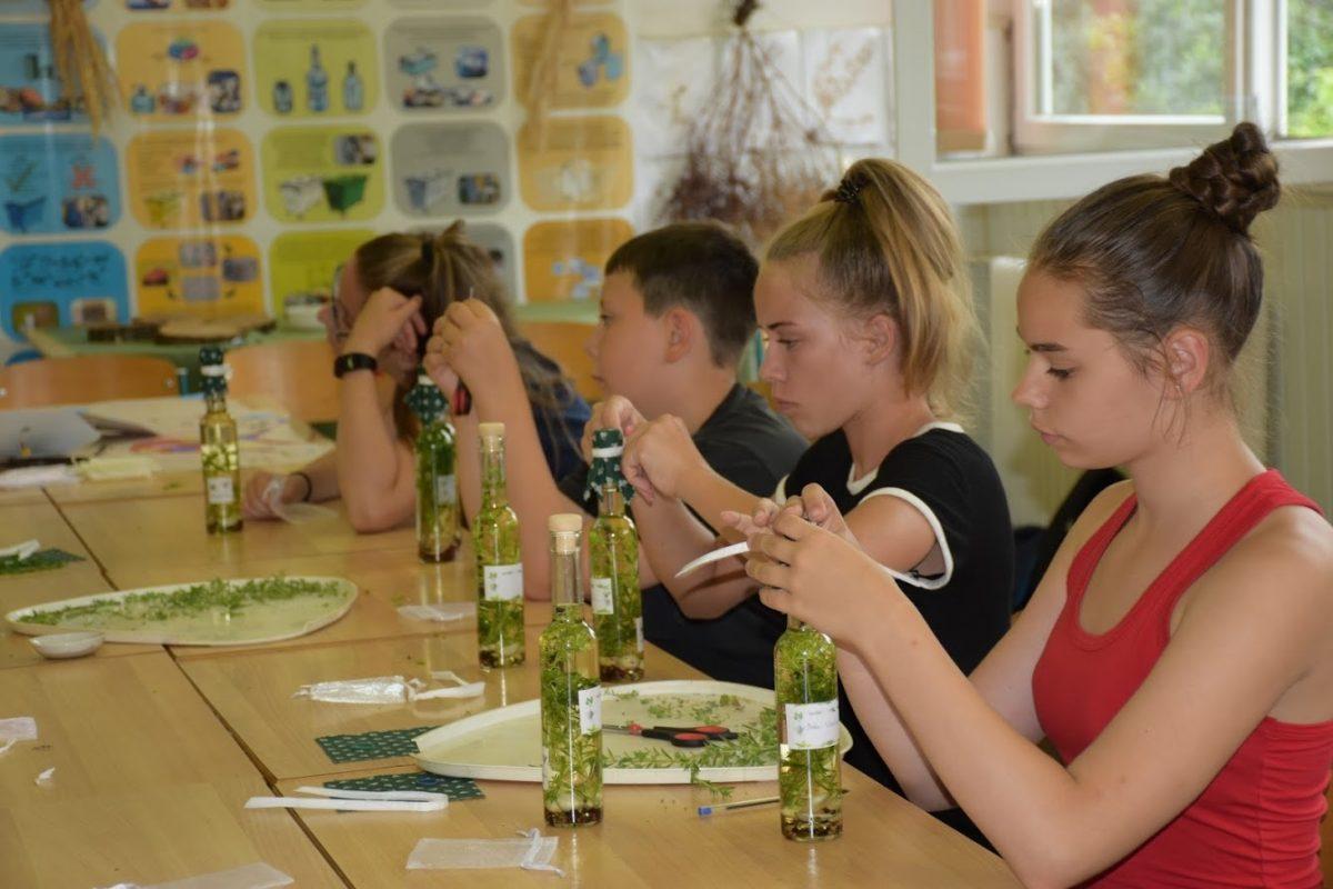 Szakmakóstoló Hét: pályaorientációs rendezvénysorozat diákoknak