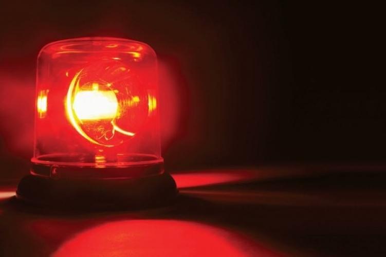 Őzzel ütközött egy rendőrautó Békéscsabán