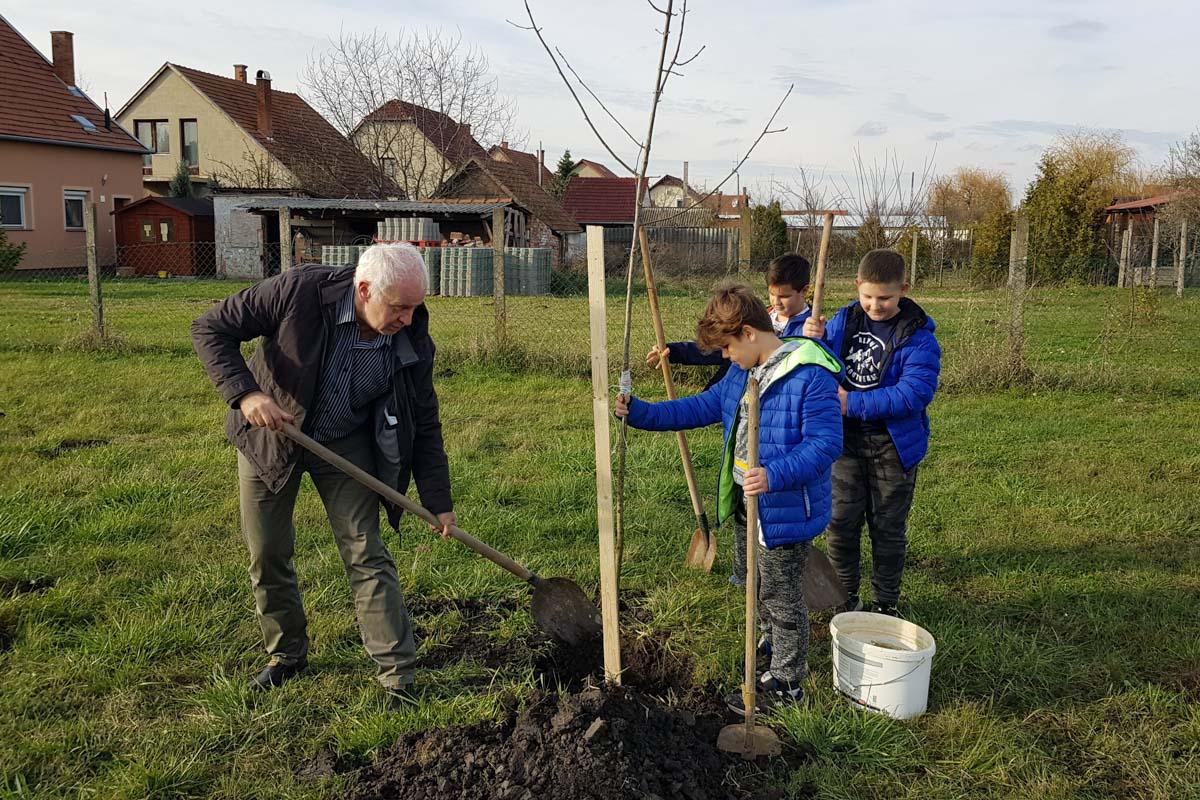 Nevelj föl egy fát címmel indult faültetési program Gerlán