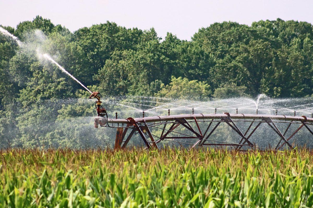 Mentesül a vízkészletjárulék-fizetési kötelezettség alól a mezőgazdasági ágazat