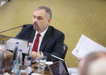 Zalai Mihály, fejlesztés, óvoda