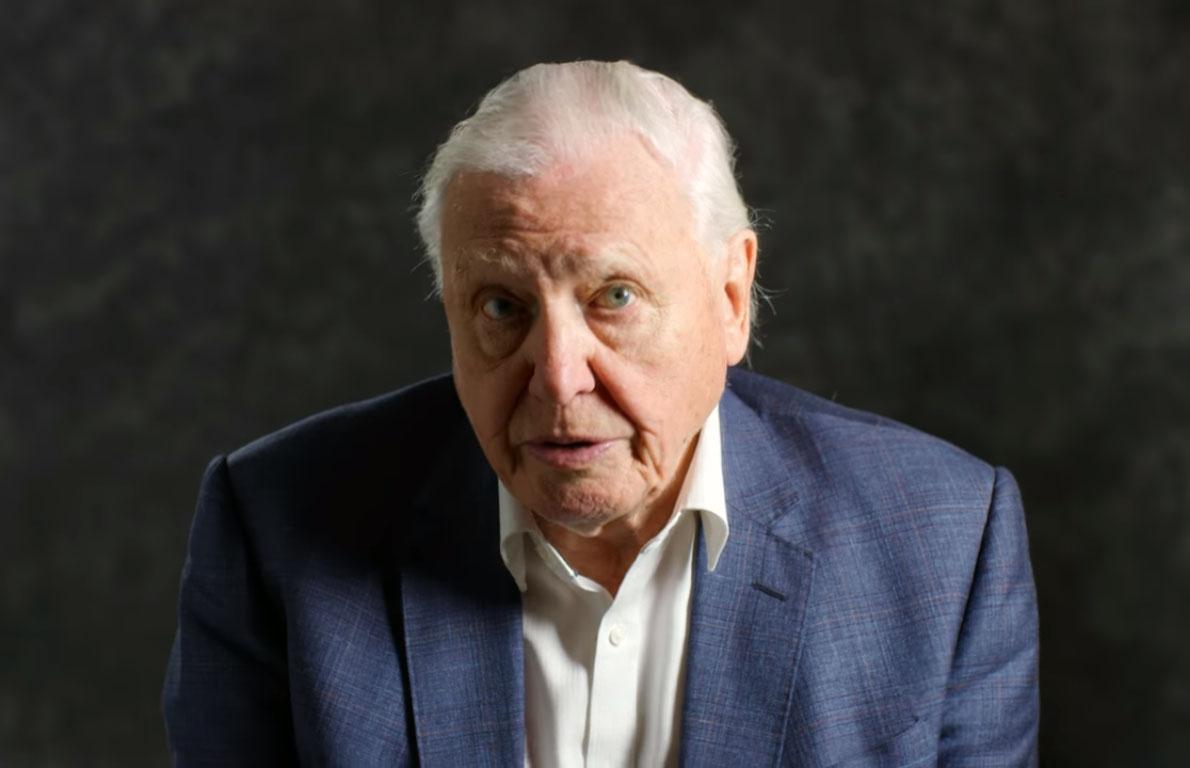 David Attenborough: Nem halogathatjuk tovább a cselekvést