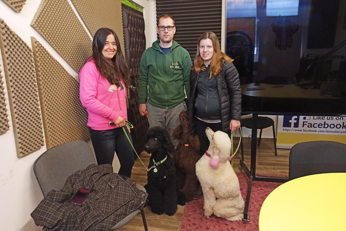 Az óvodásoktól az idősekig mindenki lelkesen fogadja a Dogland terápiás kutyáit