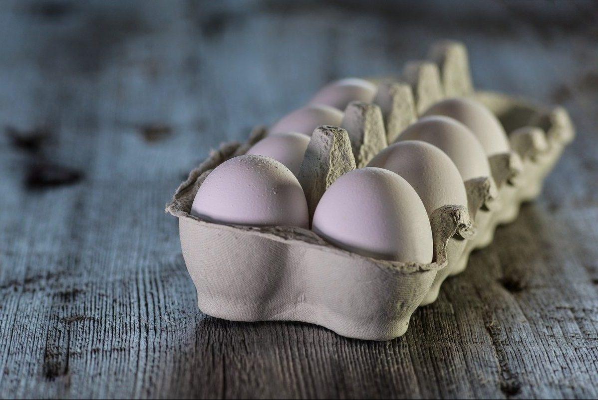Áremelésre kényszerülnek a tojástermelők a takarmány drágulása miatt