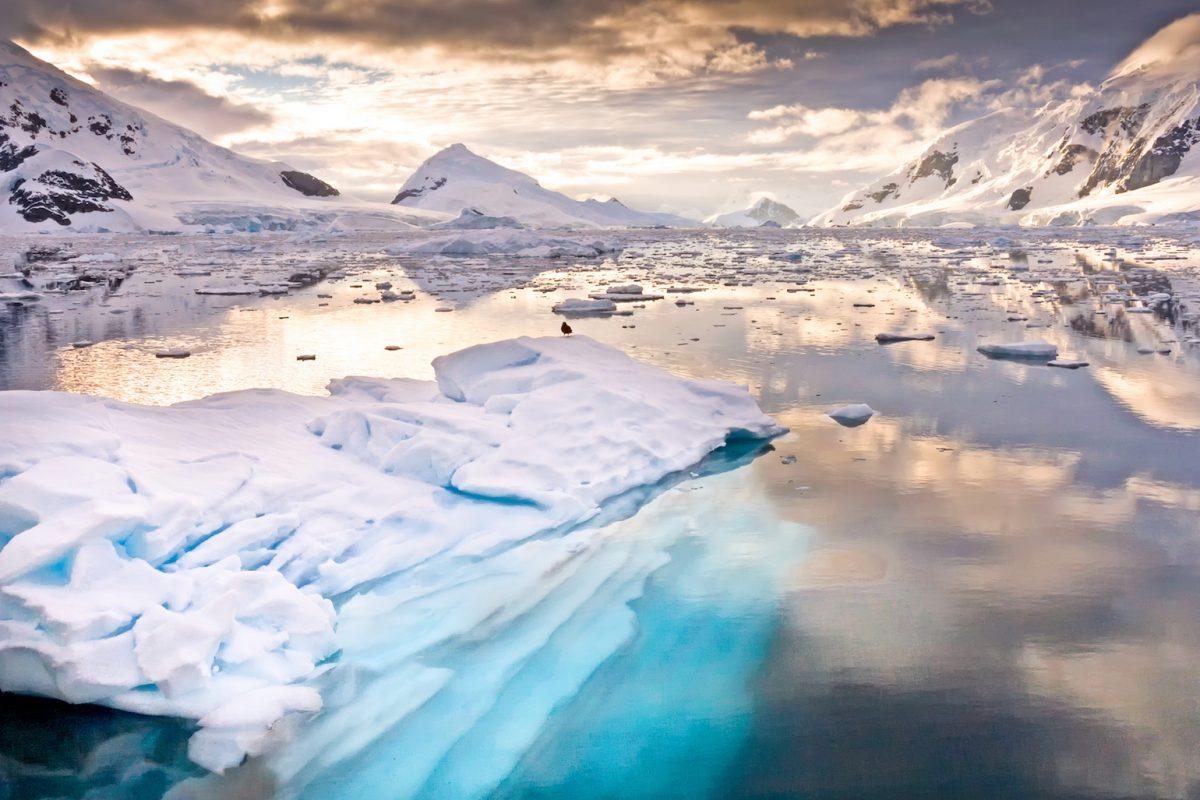 Először találtak mikroműanyagot antarktiszi jégmintákban