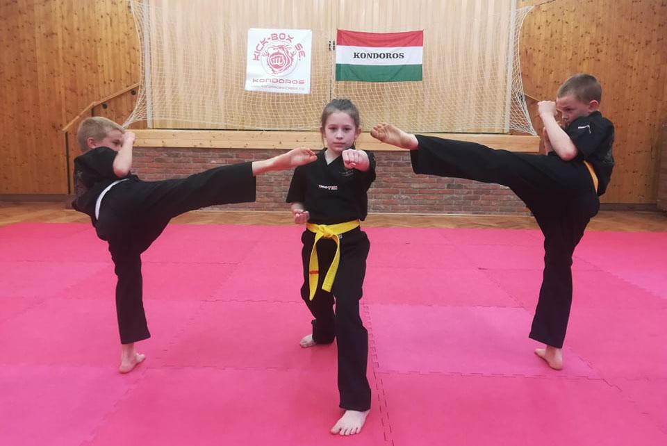 Kondorosi kick-box sikerek a nemzetközi internetes formagyakorlat versenyen