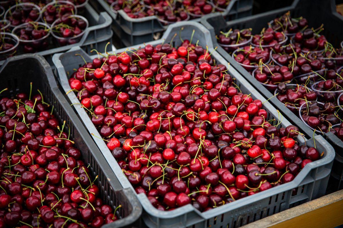 Az agrártárca 5,5 milliárd forintot biztosít a kistermelők lehetőségeinek javítására