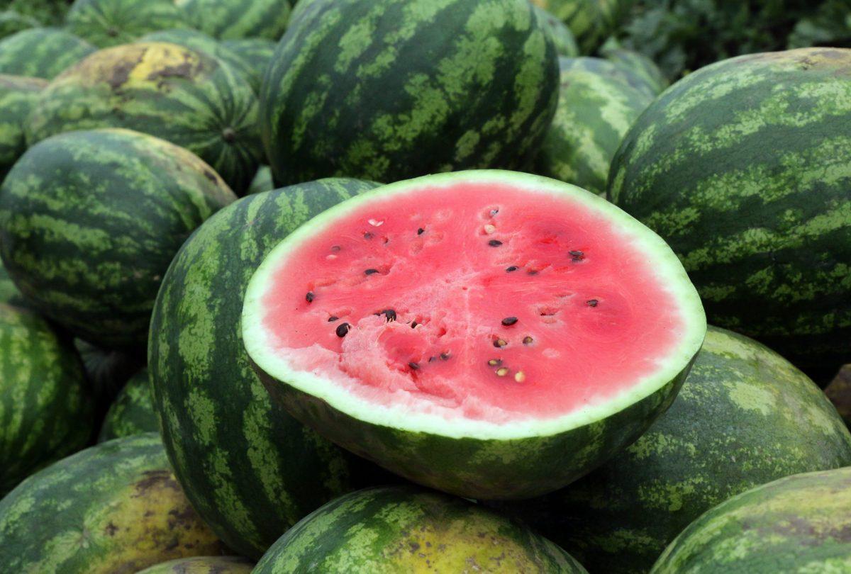 Júliustól szeptember végéig elérhető lesz a magyar görögdinnye