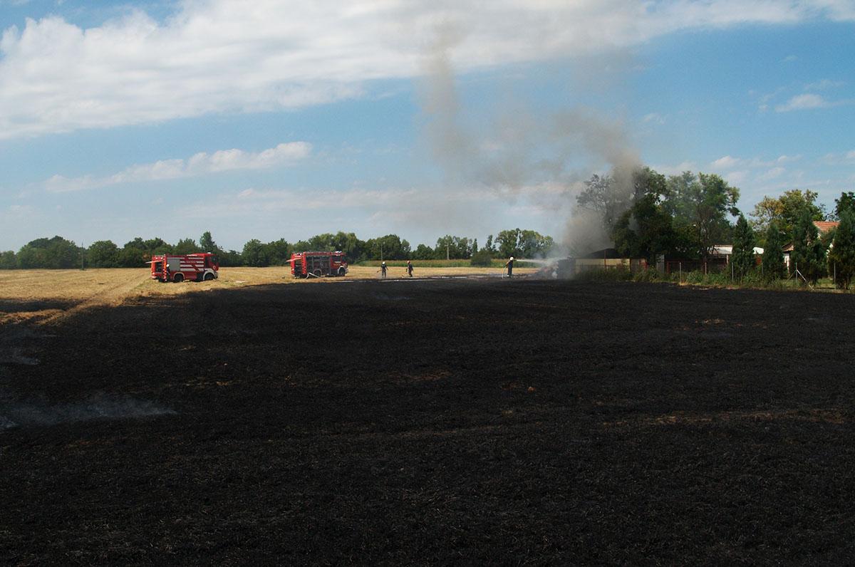 Tarlótűzhöz vonultak a tűzoltók Békéscsabán