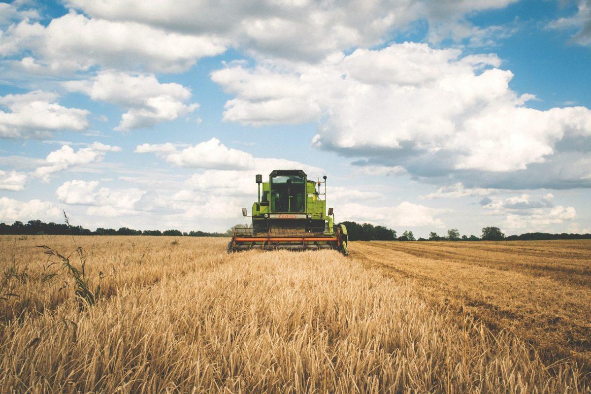 Kissé csúszik az aratás a keleti országrészben