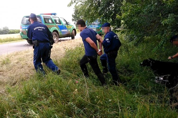 Tarhos és Doboz között, egy kukoricatáblában fogták el a határsértőket