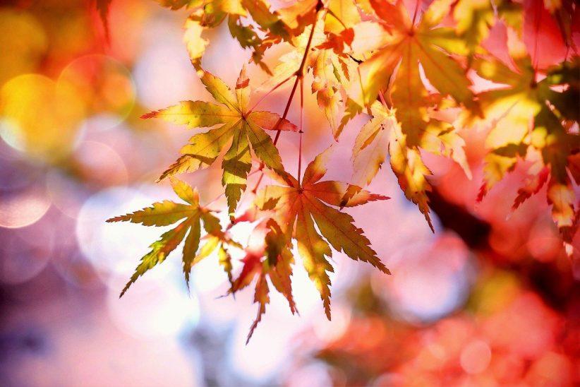 melegebb, szeptember, ősziesebbre, Felmelegedés