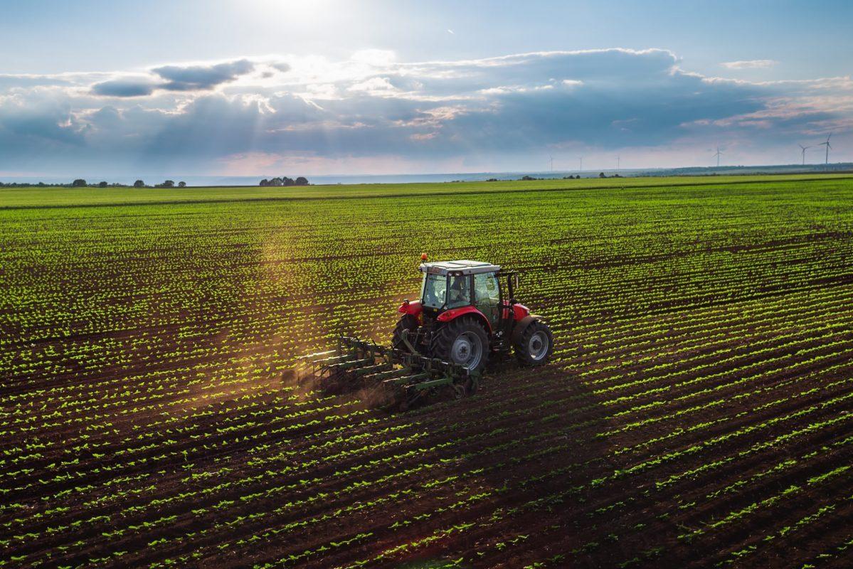 KSH: Szombaton folytatódik az agrárcenzus