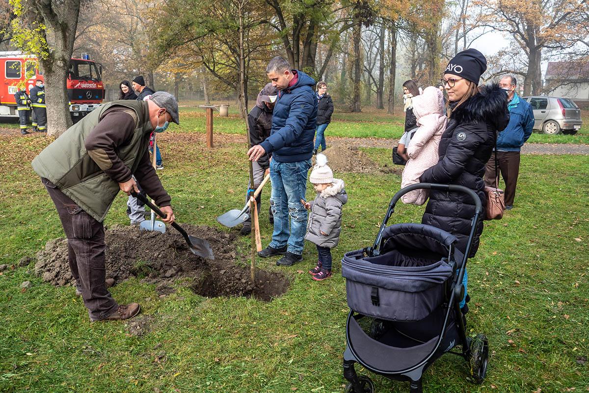 Elültették a családok az első fákat Békésen