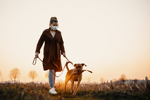 kutyasétáltatás, járvány