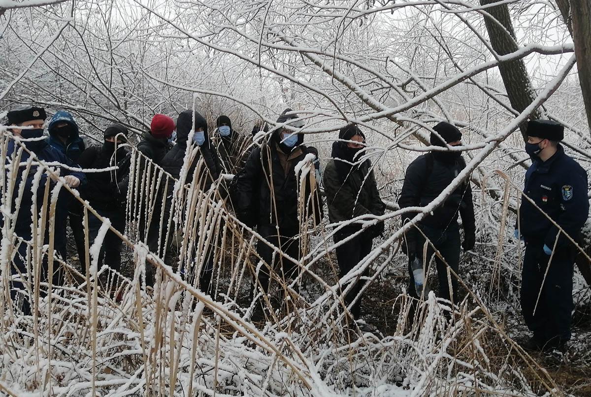 Tizenhét határsértőt fogtak el a rendőrök Battonya külterületén (videó)
