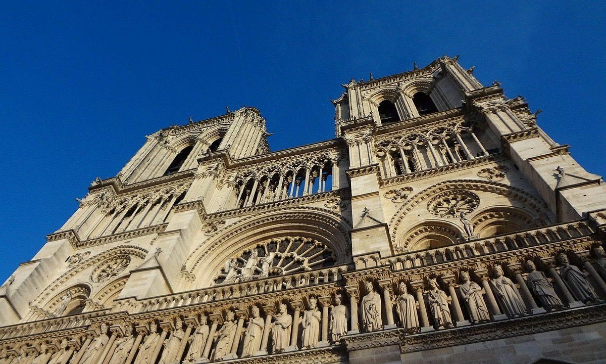 Notre-Dame: Megkezdődött a helyreállításhoz szükséges 100-200 éves fák kiválasztása
