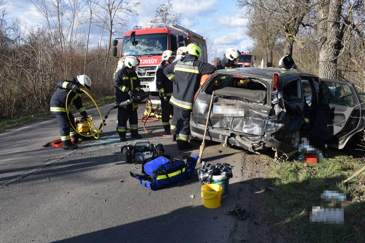 Vésztő külterületén fának ütközött egy autó, vezetője a kórházban életét vesztette