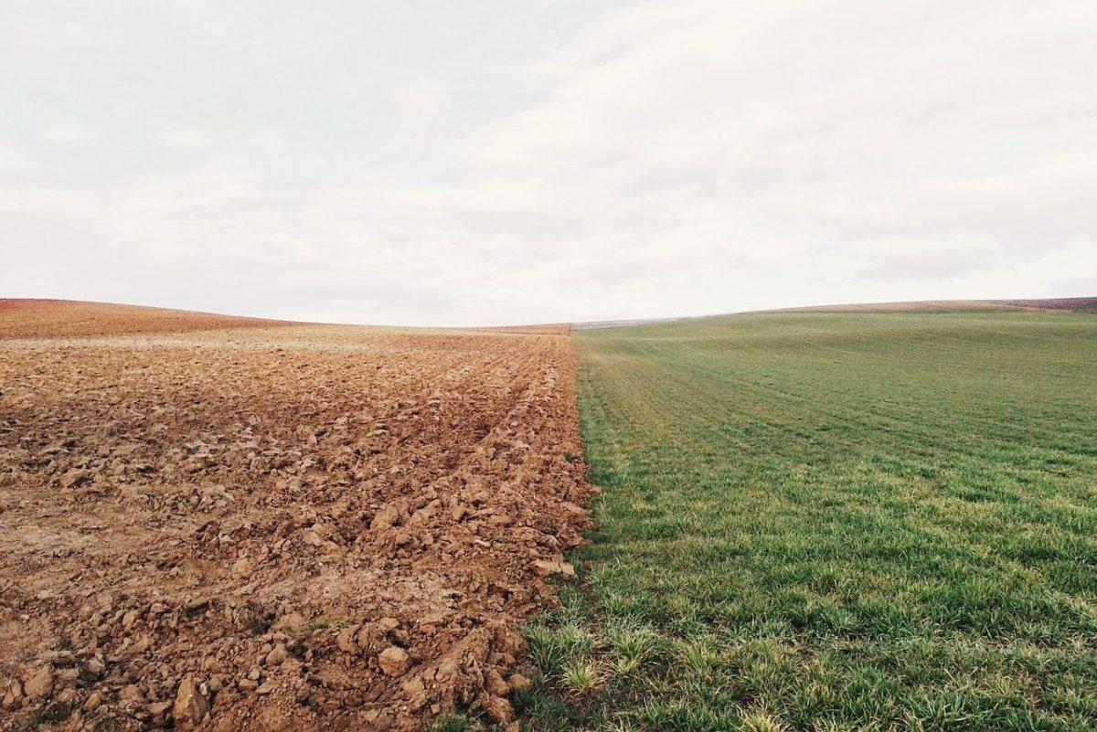 Agrárminisztérium: jól haladnak a vetési munkákkal Magyarországon
