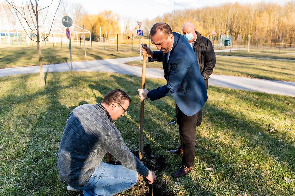 Őshonos fafajokat ültettek Dánfokon