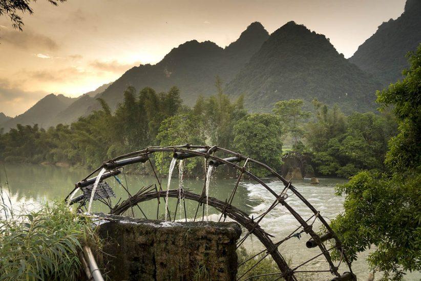 trópus, vietnam, esőerdő
