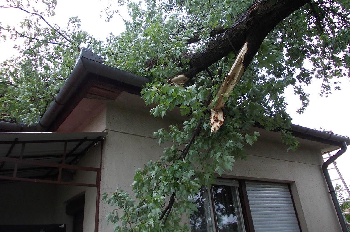 Békés megyében az erős szél okozta károk elhárítására 38 esetben vonultak a tűzoltók